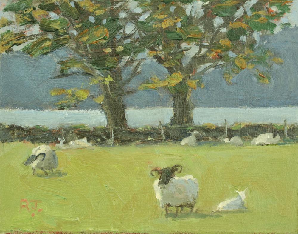 65. sheep farm, appin