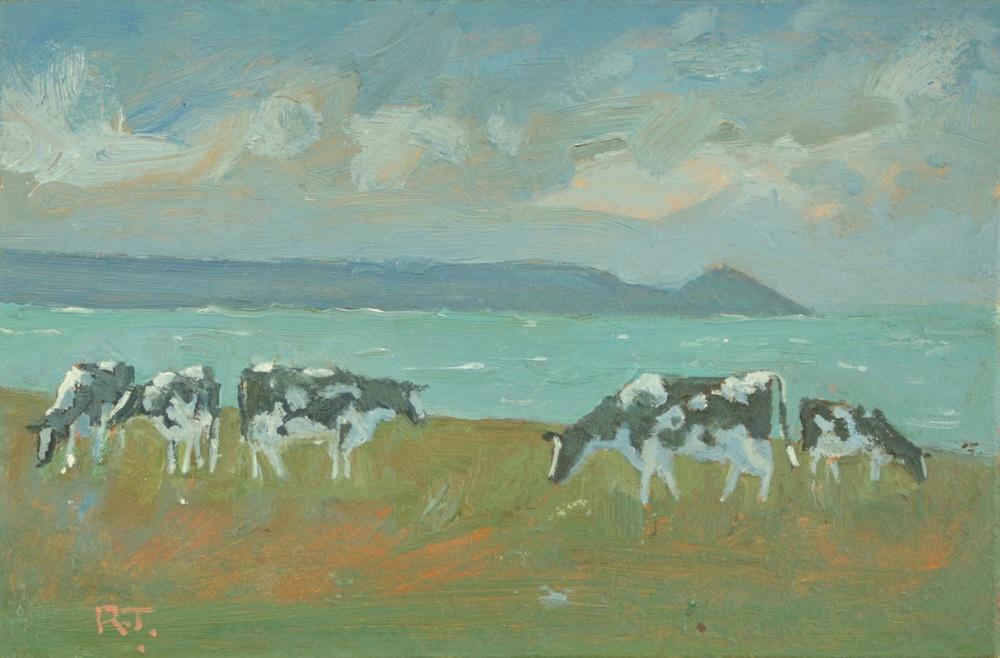 72. towards rame - cows
