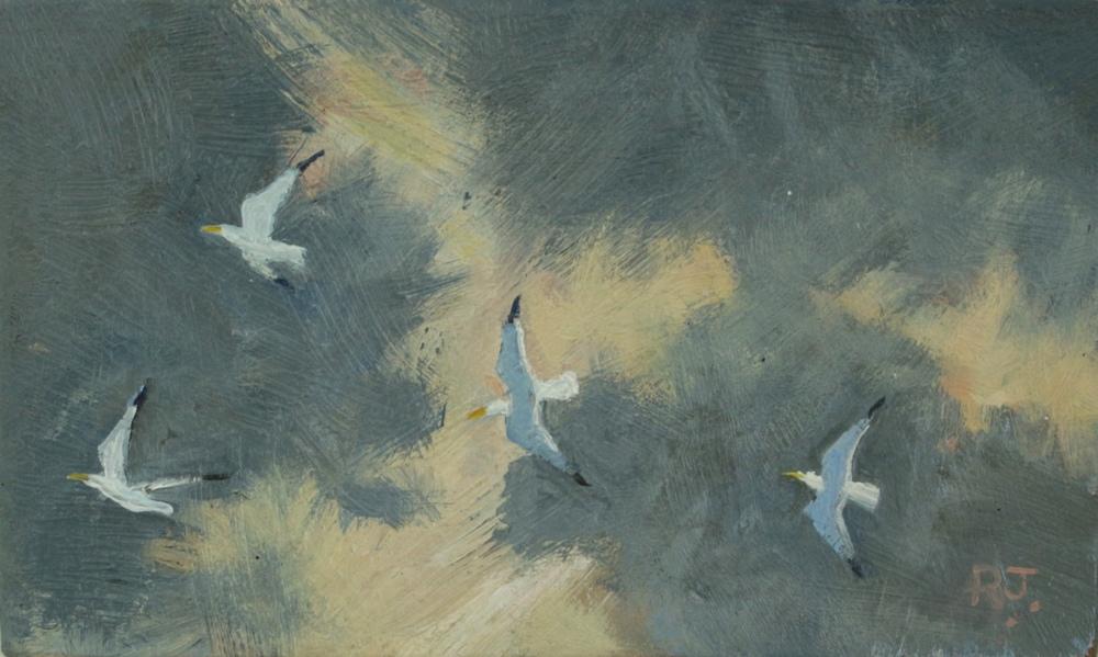 50. flight of gulls V