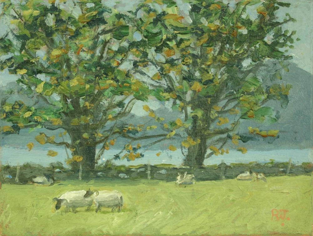 66. appin sheep farm