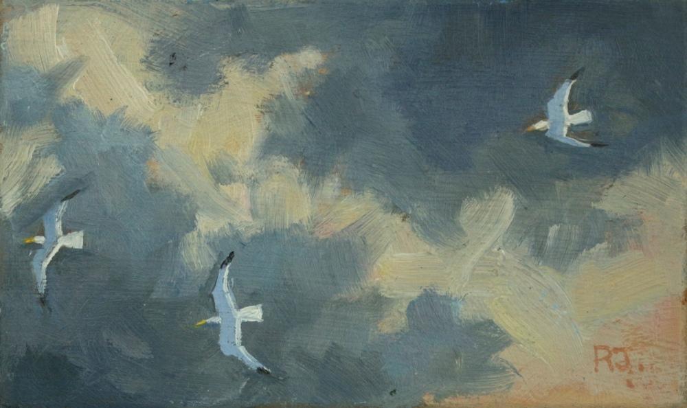 52. flight of gulls vii