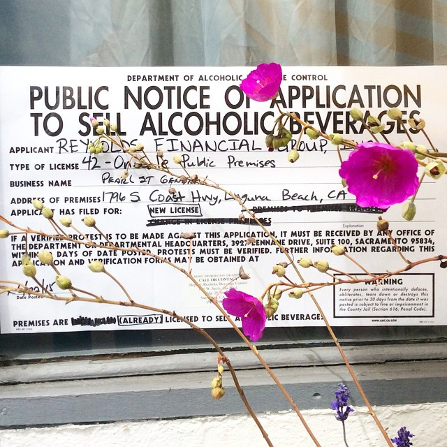 Beer and Wine Bar coming soon to Pearl St.🍷🌾🌺🌿 Come swing by! #pearlstdistrict #pearlstgeneral #localstore #wine #beer
