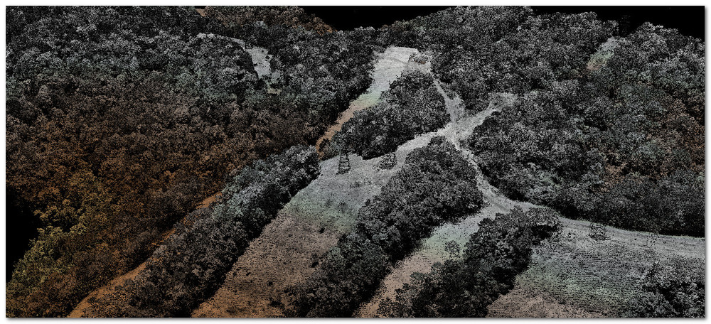 WV Lidar 1st Return Intensity Elev.jpg