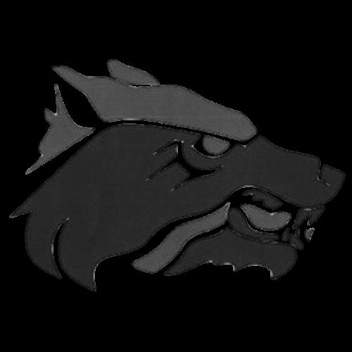 CPHS Grey Logo Transparent Square.png