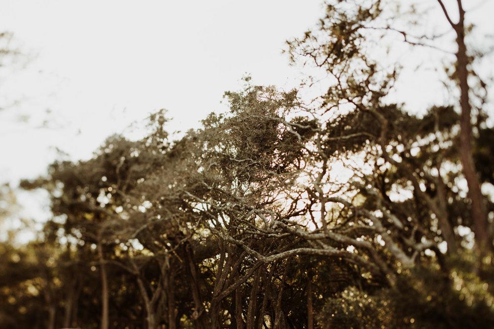 AnnaandBenblog-11.jpg