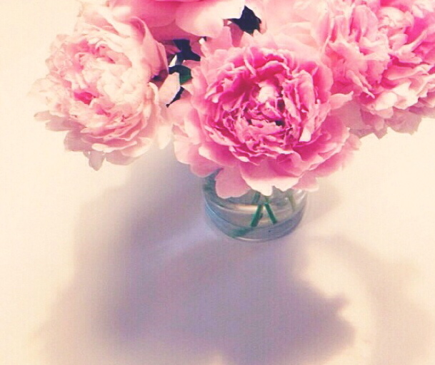 Nothing brightens up my place quite like  pink peonies