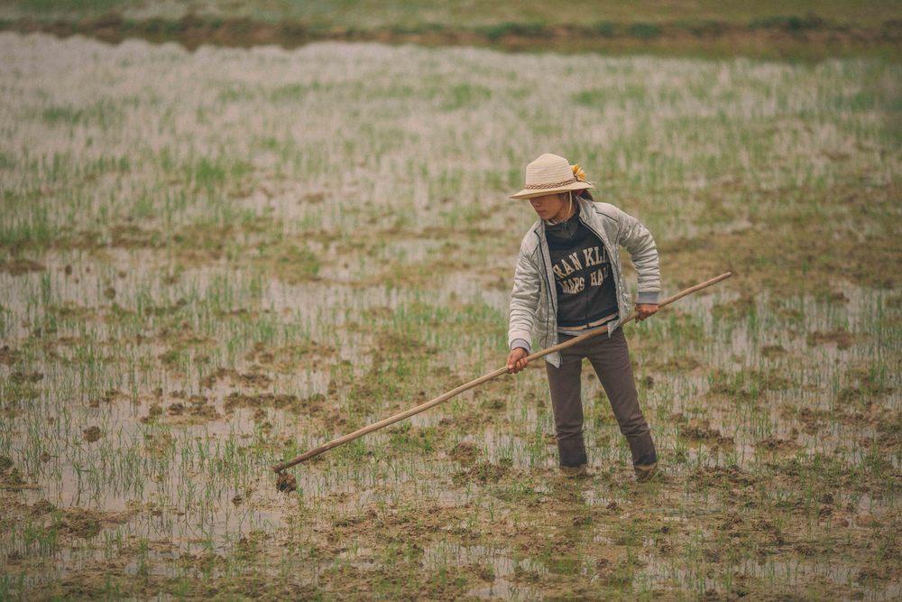 Grover Films | Phong Nha-Ke Bang