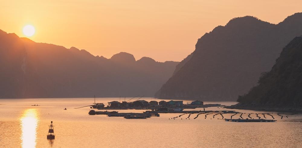 Grover FIlms | Vietnam