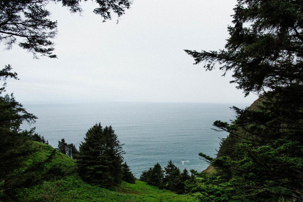 Oregon-Coast-0061.jpg