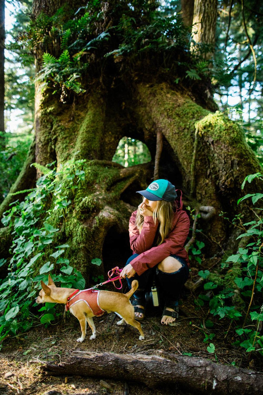 Oregon-Coast-0505.jpg