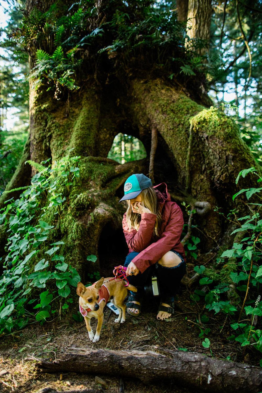 Oregon-Coast-0507.jpg