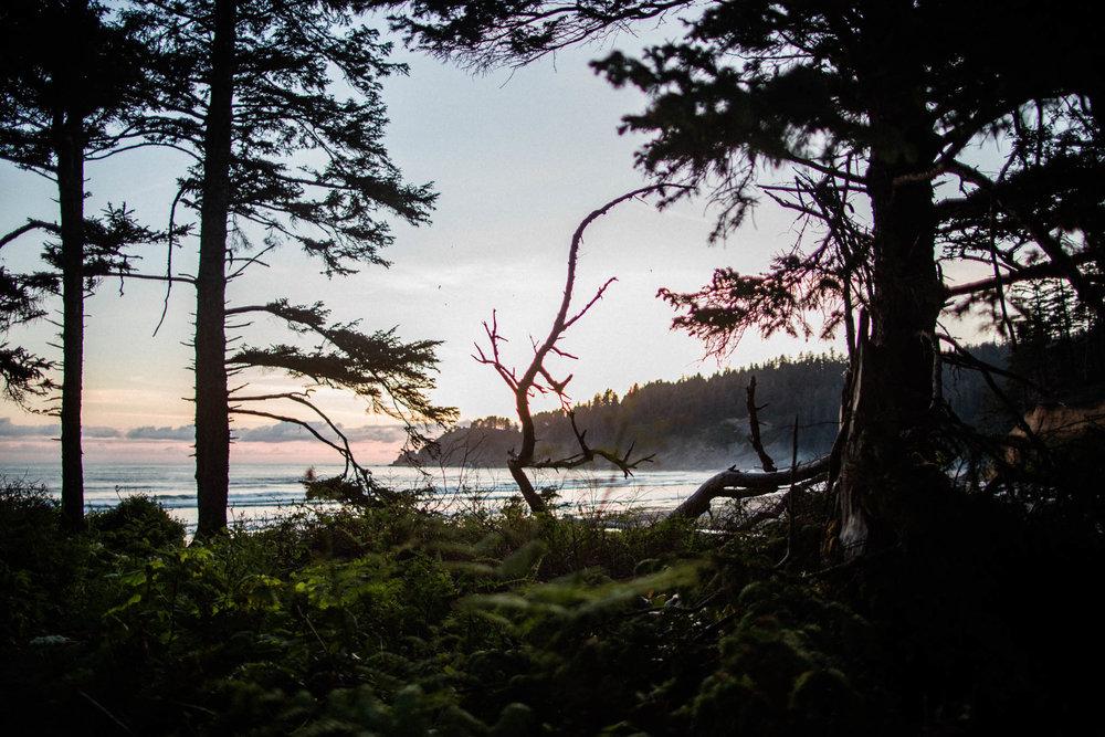 Oregon-Coast-0673.jpg