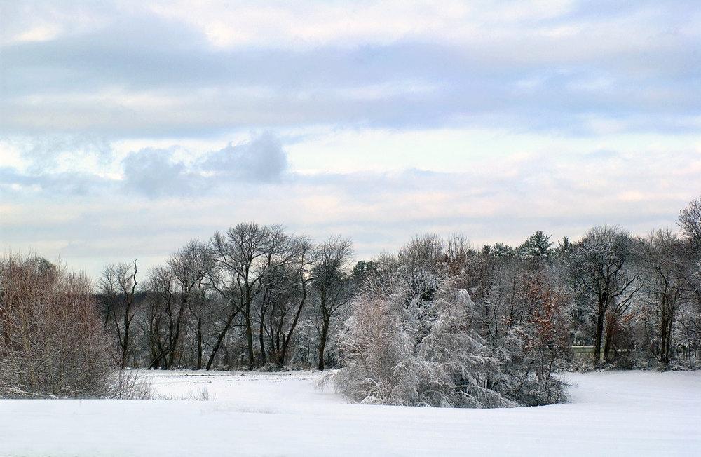 snow .jpg