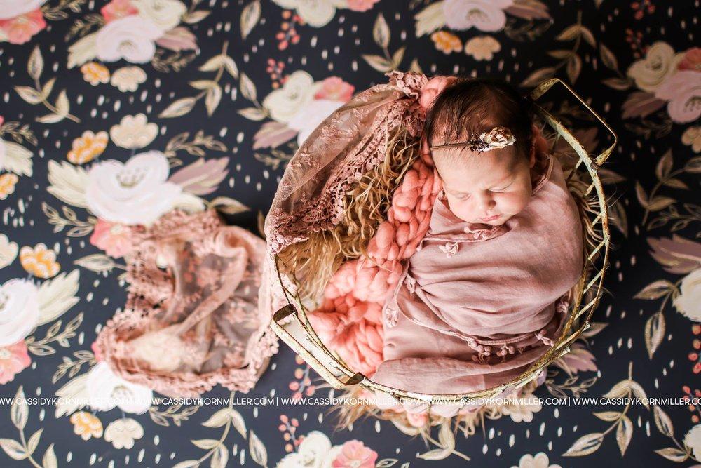 Newborn& maternity -