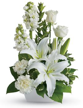 Example image of Arrangement  Pictured : Code AC029 $77.00