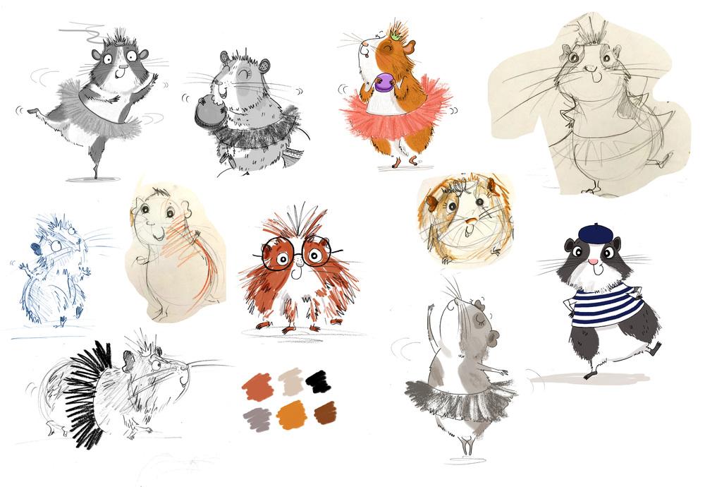Guinea pig studies