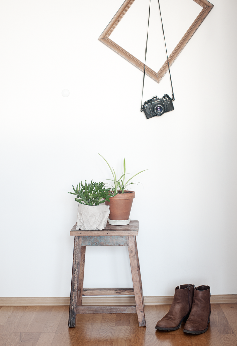 soffa_magazine_plants_at_home.png