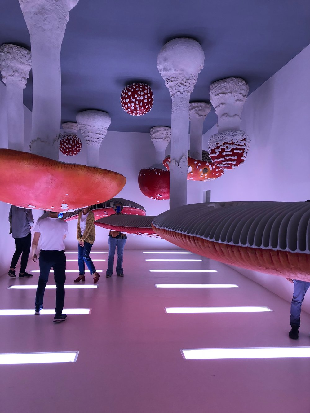 Installation  Upside Down Mushroom Room  by Carsten Höller