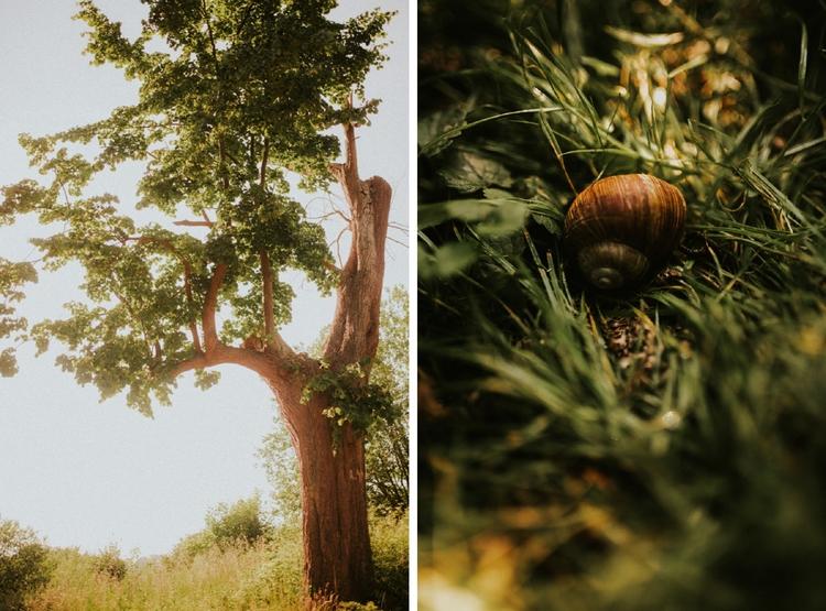 Destination+wedding+Rafal+Bojar+Cegielnia+Rzucewo+colage+14.jpg