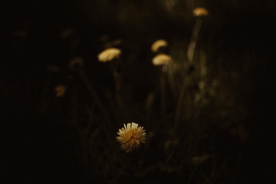 aga-radek-rafal-bojar-photography 65.jpg