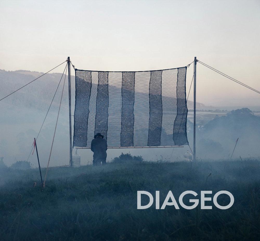 Daigeo2.2 copy.jpg