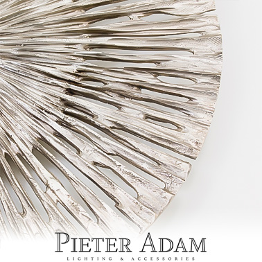 Pieter_Adam.jpg