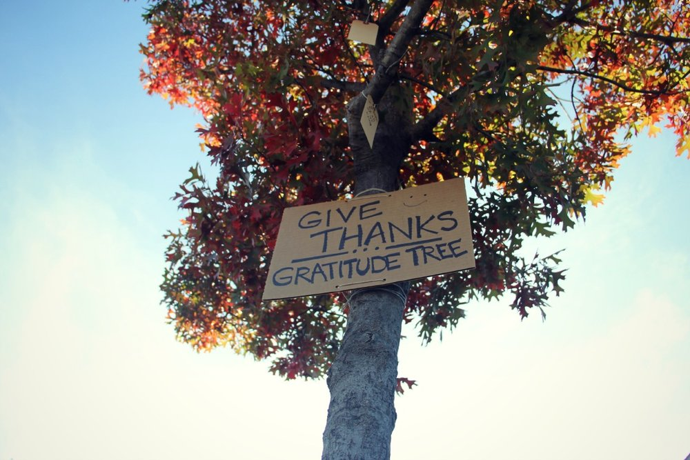 Gratitude Tree 2.jpg