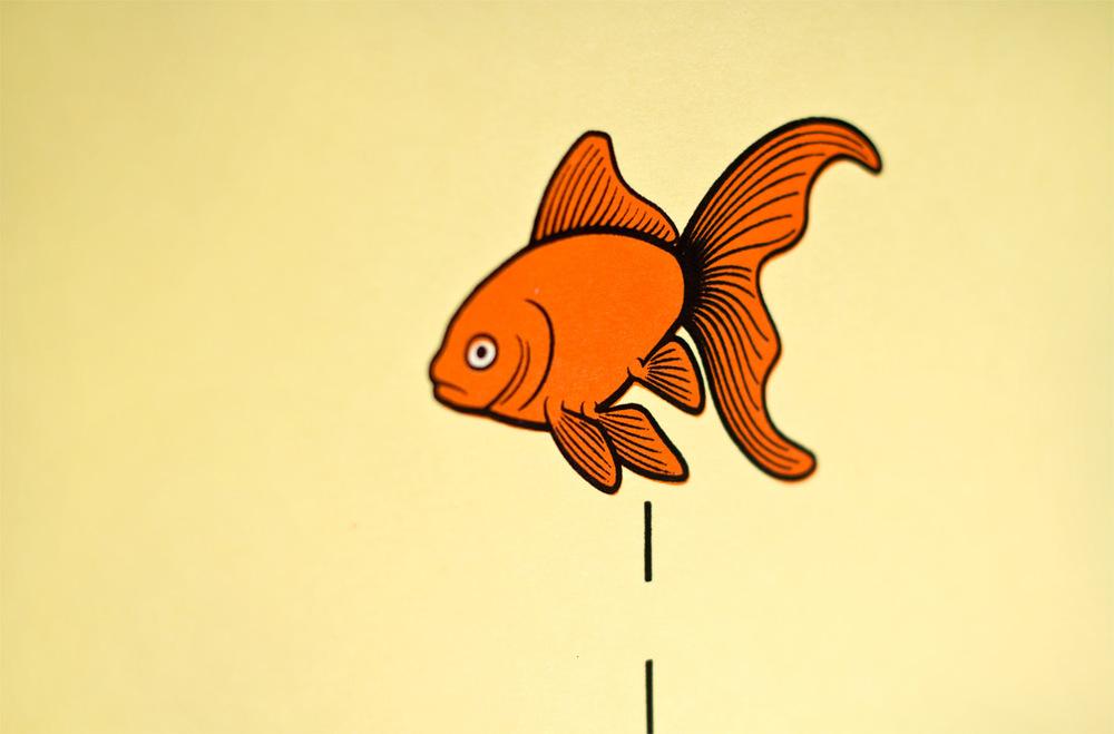 fish_02.jpeg