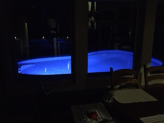 concrete pool photo canada pool coating night time photo.jpg