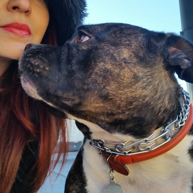 Professional Eater | Storyteller |Explorer |Dog Mom