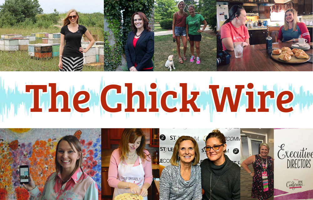 Chick Wire Banner