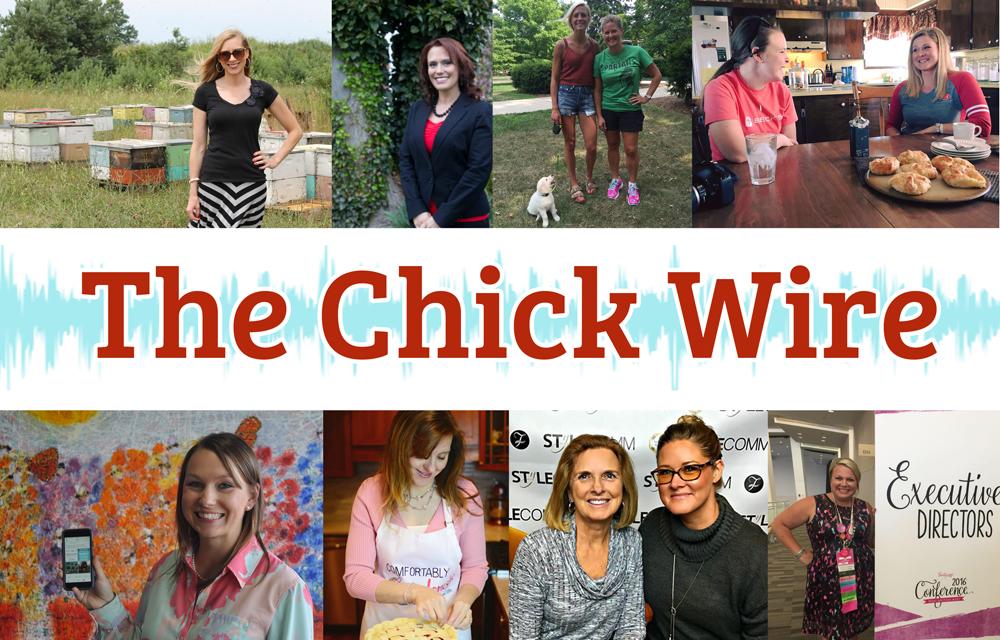 Chick Wire Banner