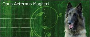 opus-aeternus-magistri.jpg