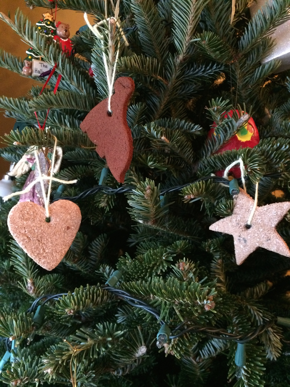 Cinnamon Ornaments on Tree by Encourage Play