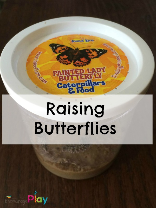 Raising Butterflies from Encourage Play
