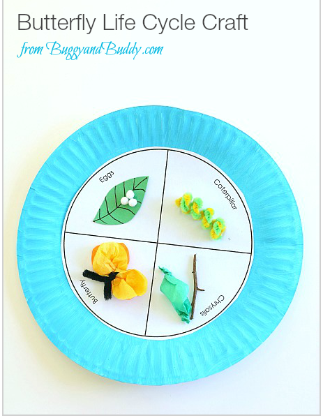 Butterfly Life Cycle Craft Image from Buggy and Budy