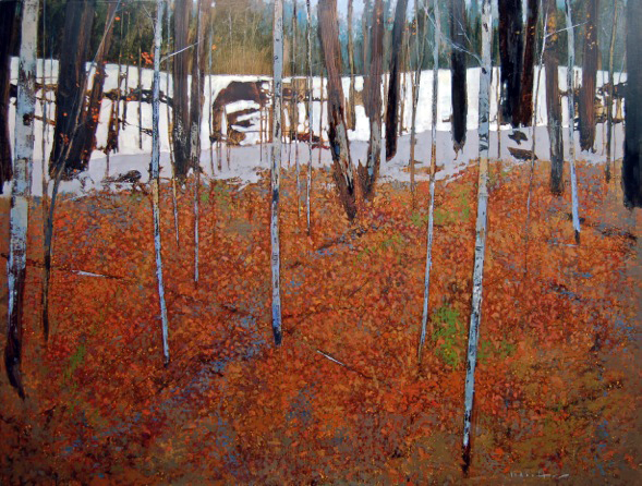 BIRCH FOREST- DAVID LIDBETTER