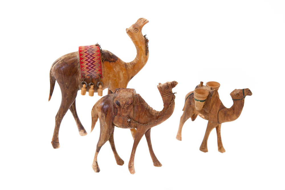 (PS-009) LOS DROMEDARIES