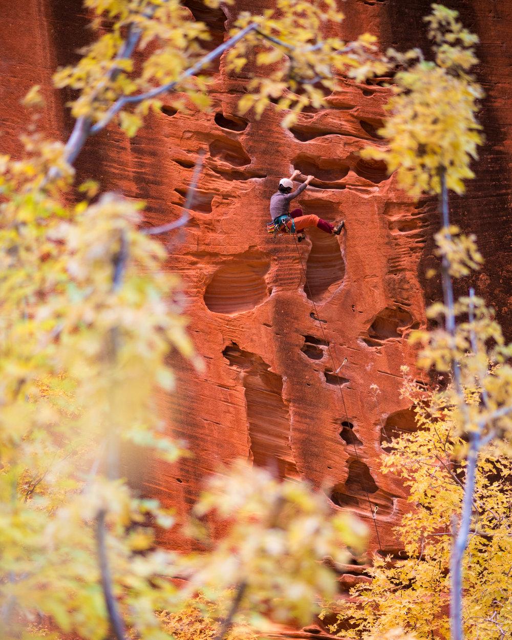 Miles Weaver_Zion National Park_Kolob Canyon_Namaste Wall_climbing.jpg