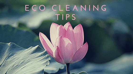 Eco CleaningTips(2)(1).png