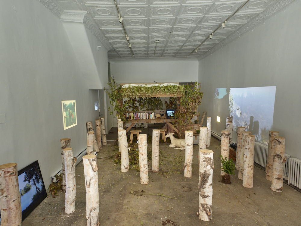 Wonder Room, 2017