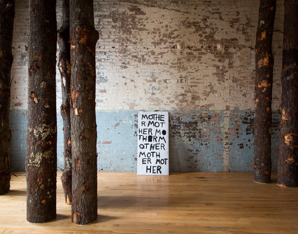 Allison Janae Hamilton - Pitch - MASS MoCA8.jpg