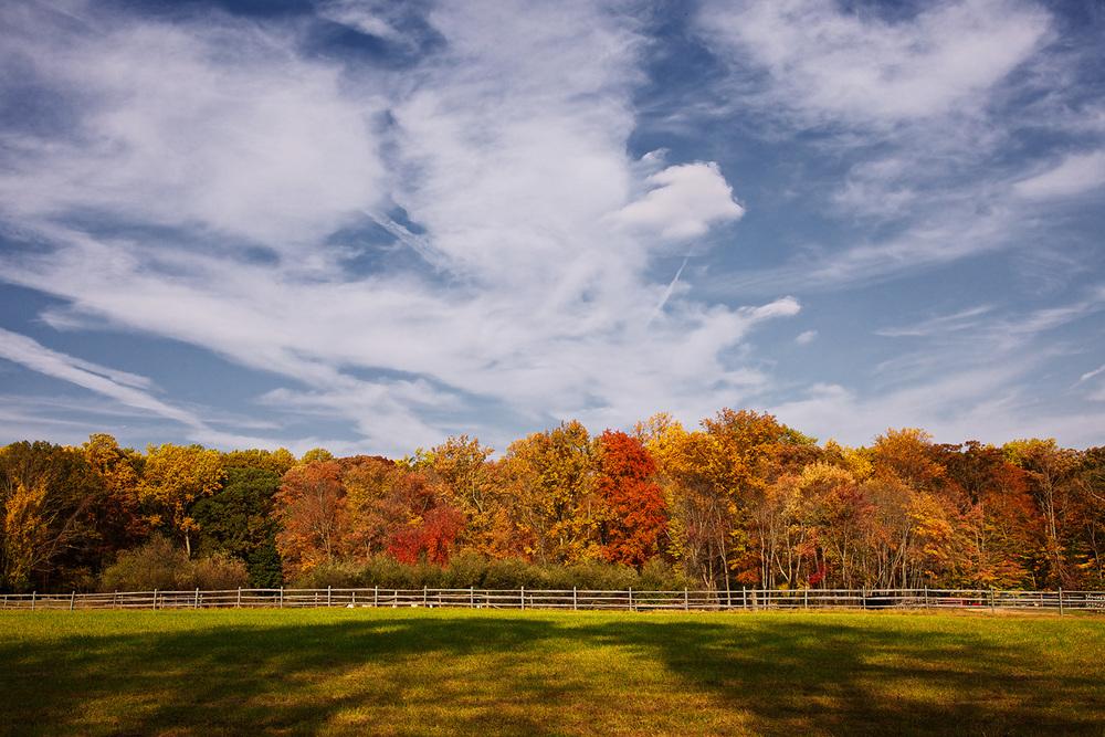 fenced_color.jpg