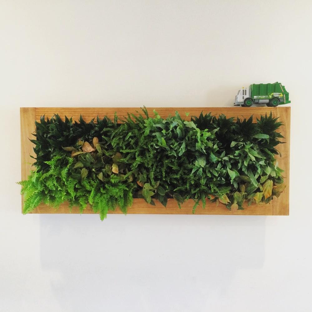Custom Plant Frame