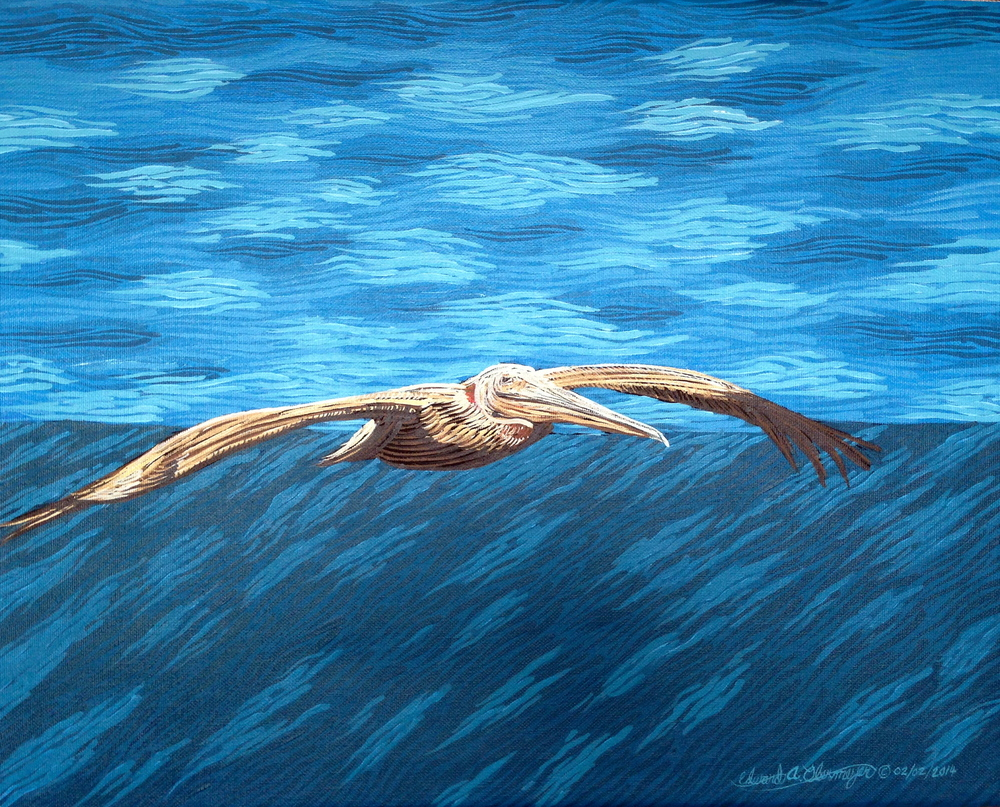 Pelican Glider