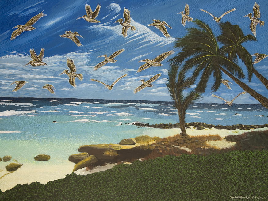 PELICAN SKY, SURFER'S POINT, BARBADOS © 3/29/2012