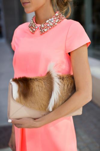 Animal Fashion Accessories