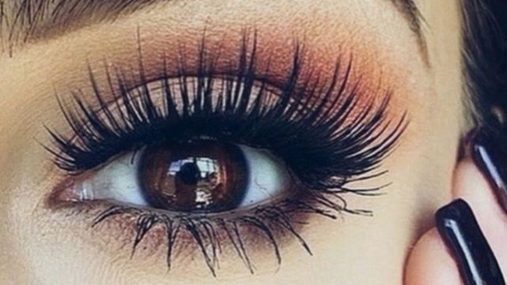 8383d2b4b3d How to Apply Eyelash Extensions at Home — Posh Beauty Blog