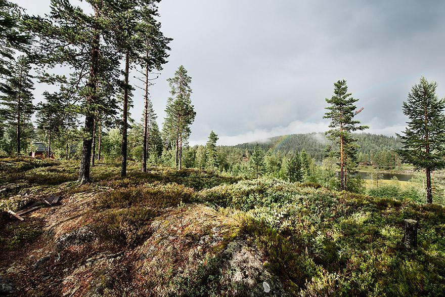 Norway_10
