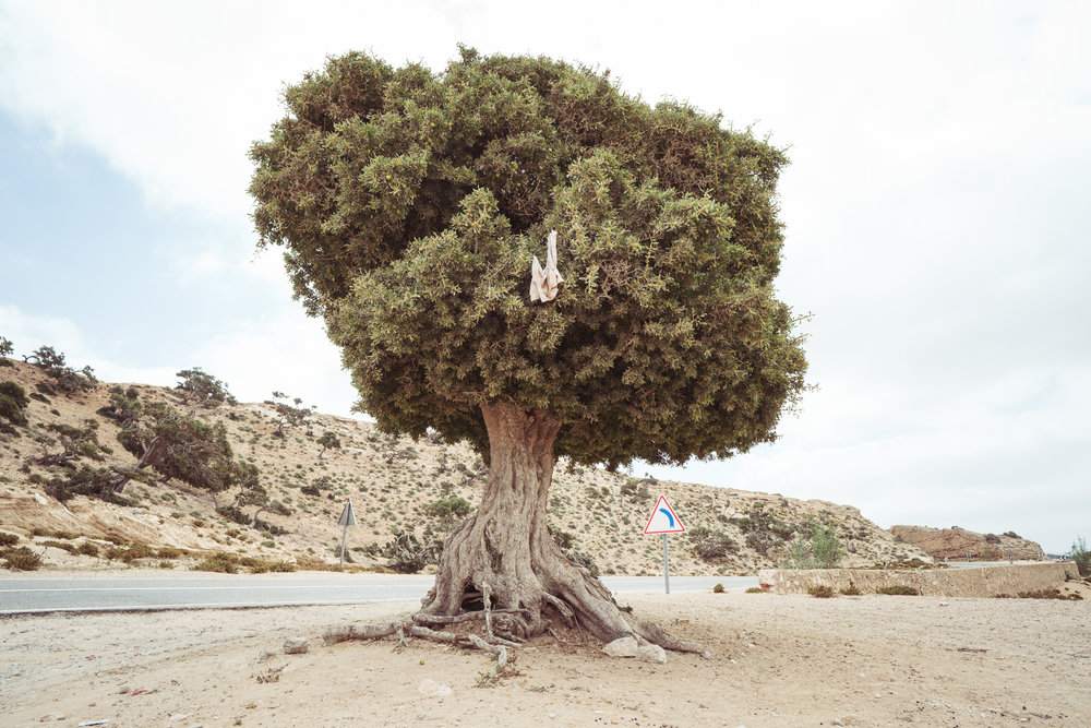 Marokko03.jpg